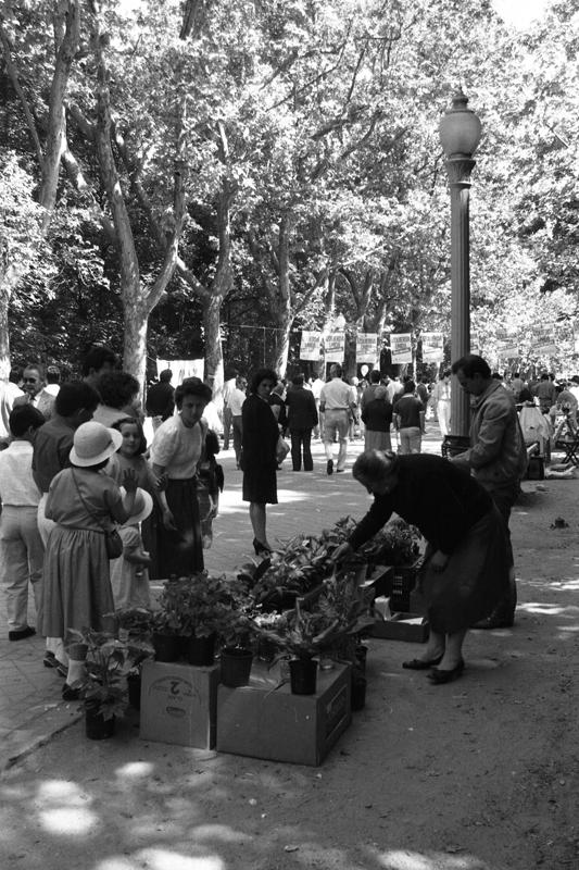 Mercadillo en el Campo Grande. Año 1987. ©Archivo Luis Laforga